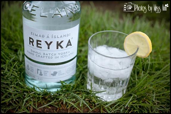 Reyka Vodka Iceland Wedding Hotel Ranga Photos by Miss Ann