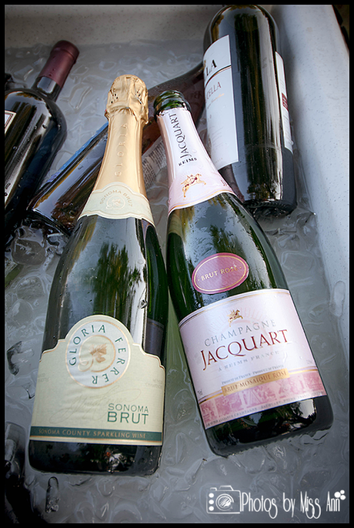 Birthday Party Champagne Toast Iceland Wedding Planner