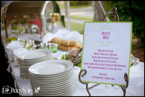 Elite Catering Livonia Michigan Events Photos by Miss Ann