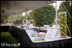 Elite Catering Setup Plymouth Michigan 30th Birthday Party Photos by Miss Ann
