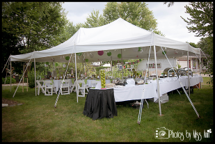 Plymouth Michigan Party Planner Photos by Miss Ann