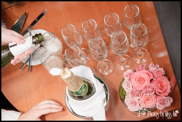 Champagne Toast Iceland Wedding Photographer Photos by Miss Ann