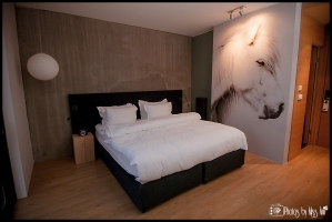 Hotel Room Photos ION Luxury Adventure Hotel Selfoss Iceland