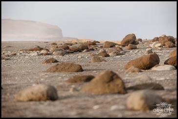 Reynisfjara Beach Wedding Photos Iceland