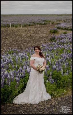 Iceland Wedding Summer Flower Fields