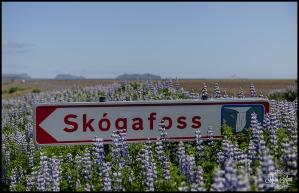 Skogafoss Waterfall Iceland Wedding Location