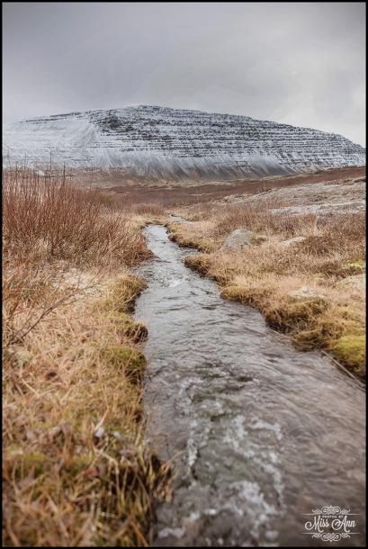 Iceland Westfjords (2)