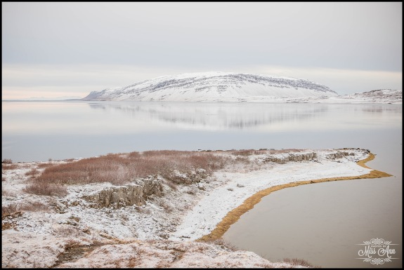 West Fjords Iceland Wedding