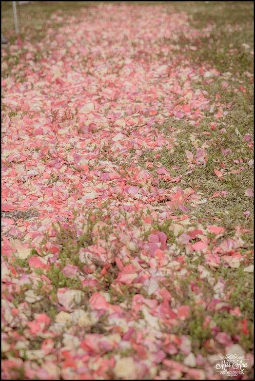 Iceland Wedding Ceremony Rose Petals