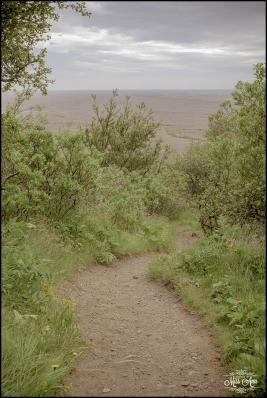 Iceland Honeymoon Photographer-9