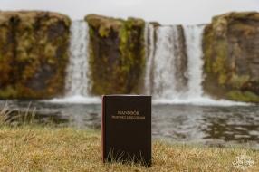 Iceland Weddings-4