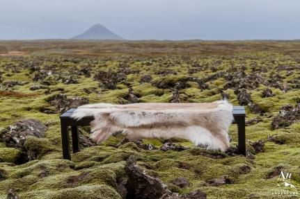 iceland-wedding-rental-benches-with-fur