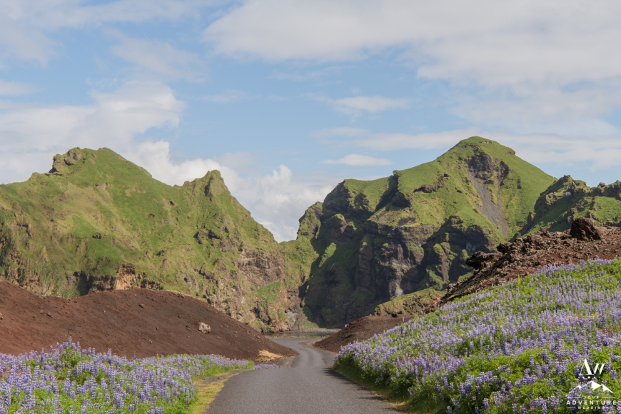Heimaey Iceland Wedding Locations-37