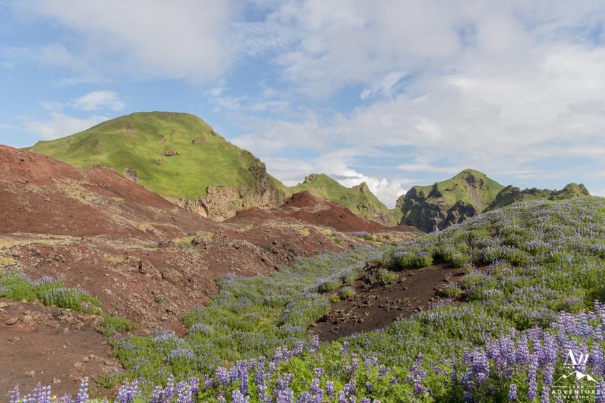 Westman Islands Iceland Wedding Locations-36